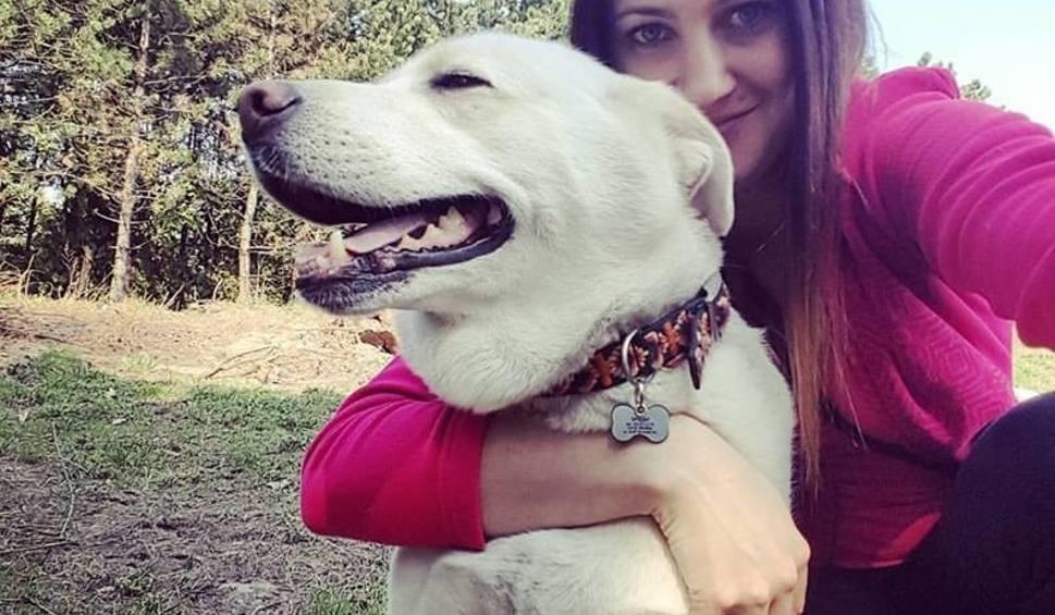 Film do artykułu: Licealiści się pomylili. Pies nie został postrzelony, tylko utonął. To był Spajki