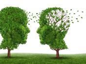 Sprawny mózg – demencja, alzheimer i parkinson zależą też od stylu życia!
