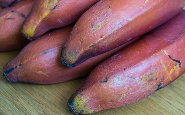 Czerwone banany(podobnie jak żółta odmiana tych owoców) jest dość kaloryczna – w 55 g dostarcza około 54 kcal.