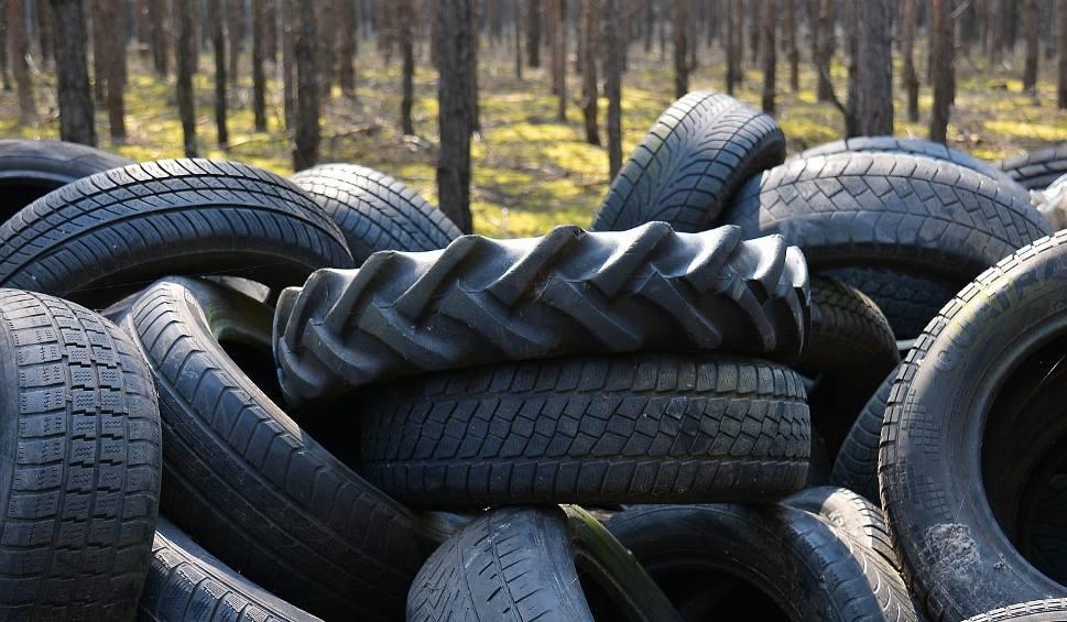 Film do artykułu: Setki opon w lesie na drodze Brody - Zasieki za kilka dni zostaną zabrane