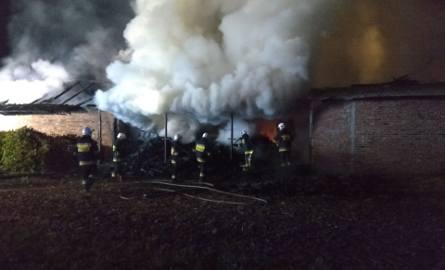 Strażacy walczyli z pożarem budynku gospodarczego w Gorzycach (zdjęcia)