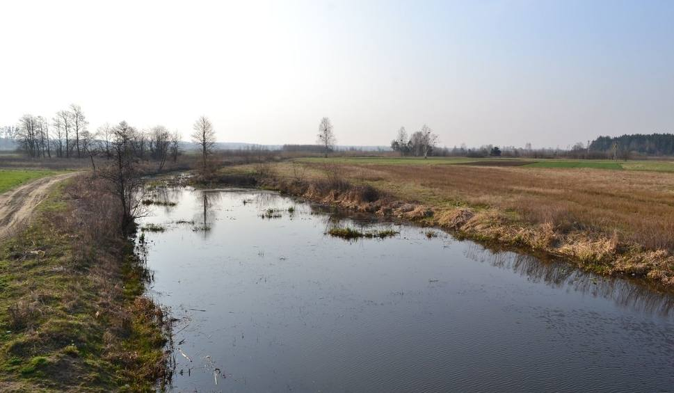 Film do artykułu: Starorzecze Łęgu w Przyszowie będzie miejscem rekreacji