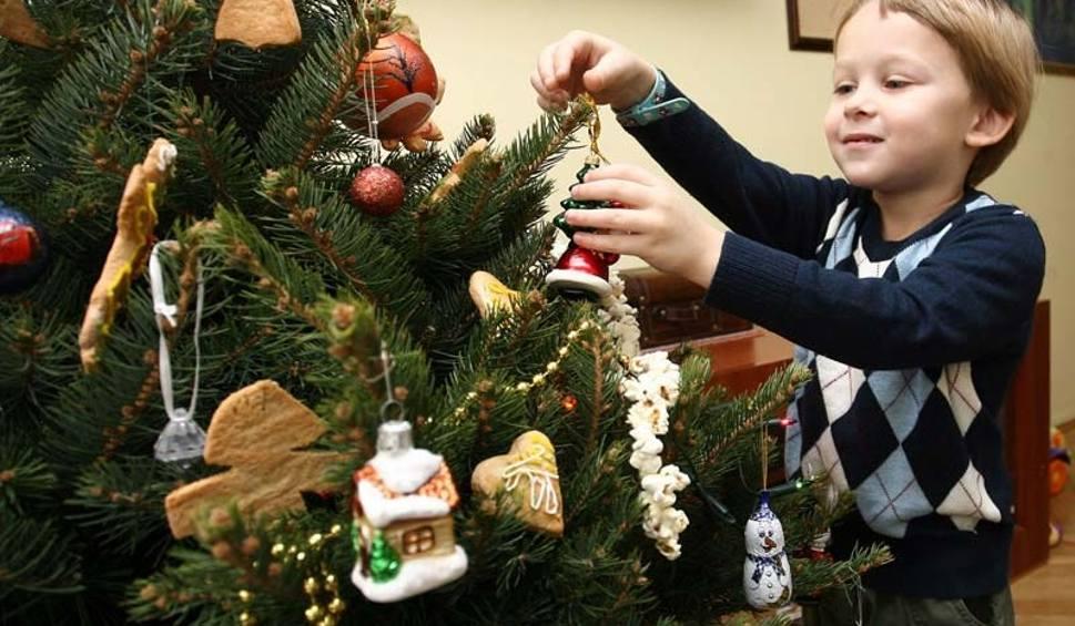 Ozd b choink piernikami orzechami i cytrusami for Weihnachtsbaum fa r fensterbank