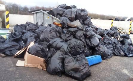 Podróżni zaśmiecają A4. Tona odpadów przy autostradzie!
