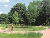 Mieszkańcy os. Kolorowego i Spółdzielcze go chcą, by część parku pozostała zielona - bez urządzeń zabawowych