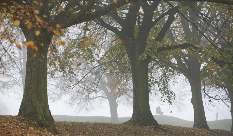 Film do artykułu: Pogoda na świąteczny weekend. Sobota z licznymi mgłami. Rozpogodzenia możliwe na zachodzie i południu