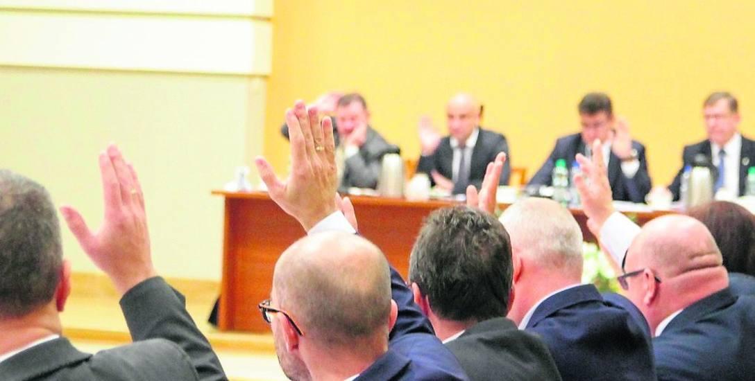 Włocławscy radni na sesjach w magistracie zgłaszali wnioski dotyczące m.in. stanu dróg, chodników, przycinki i nasadzeń drzew, placów zabaw oraz porządku