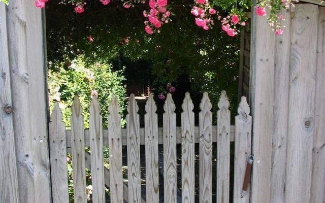 Ten ogród w stylu wiejskim zaprasza gości pięknymi pnącymi różami.