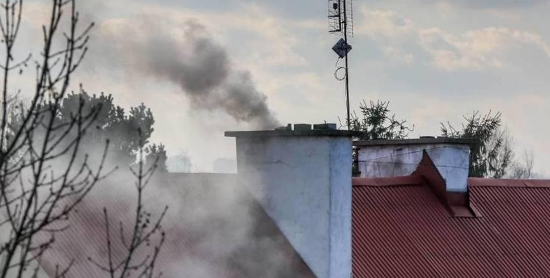 Kędzierzyn-Koźle jesienią i zimą należy do najbardziej zapylonych miast Opolszczyzny.