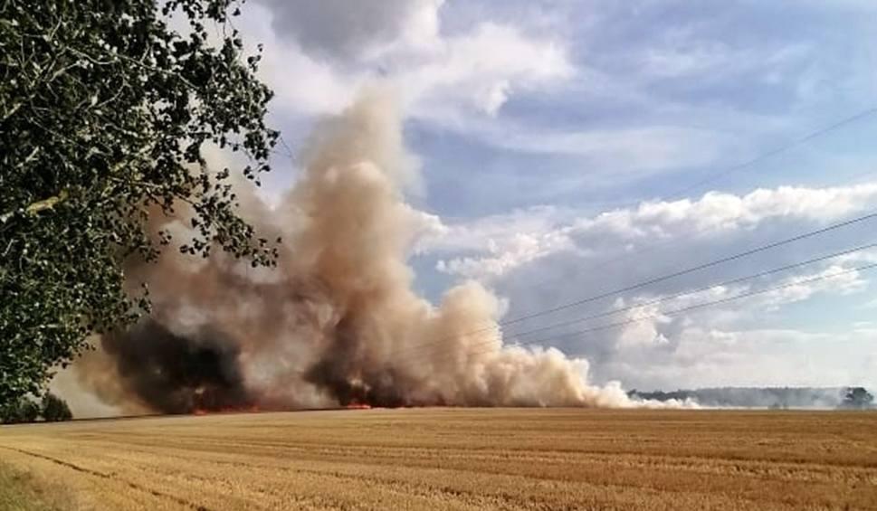 Film do artykułu: Gmina Stargard. Wielki pożar na polu pod Stargardem, między Żarowem i Smogolicami. Paliło się też na polu pod Dolicami