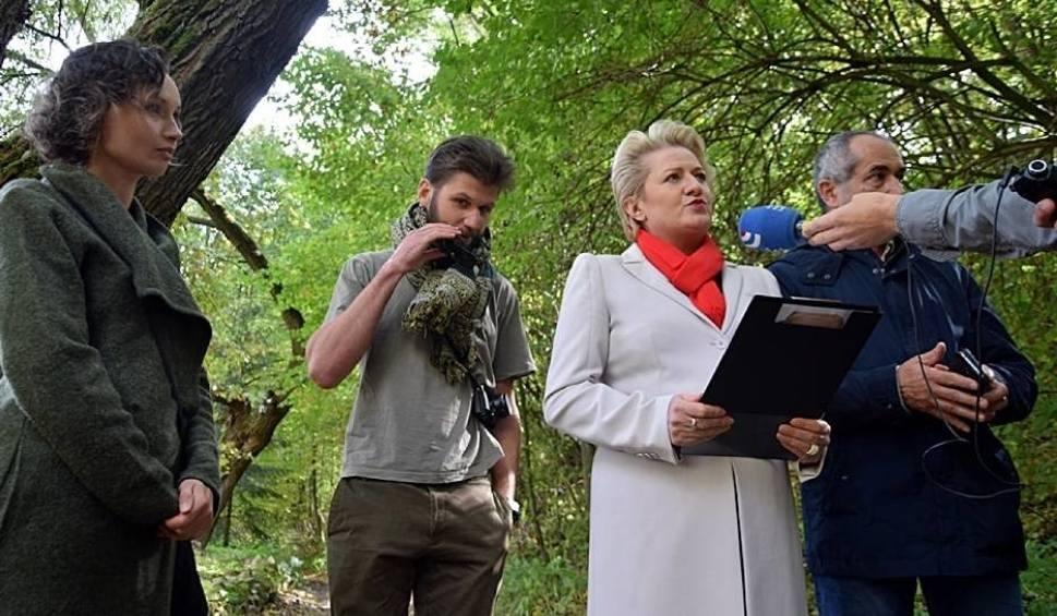 Film do artykułu: Bożena Lisowska apeluje o zachowanie Wąwozu Czarnego w Kazimierzu Dolnym