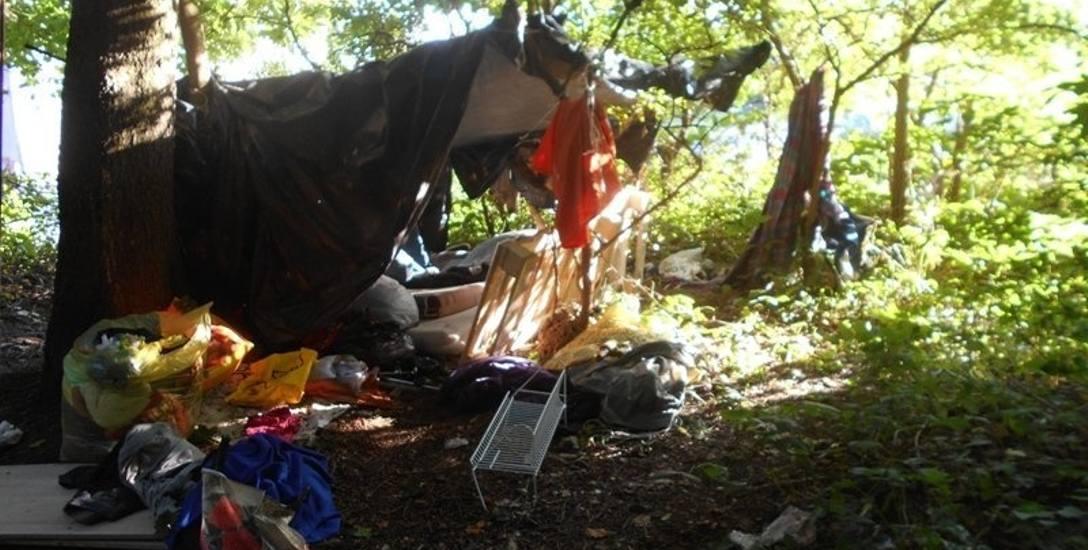 Bezdomni rozbili obóz na Świętych Górach