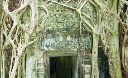 Ta Phrom - jedna z ikon kompleksu Angkor z X wieku