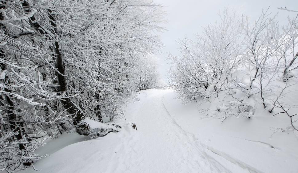 Film do artykułu: IMGW ostrzega: Intensywne opady śniegu na południu Podkarpacia