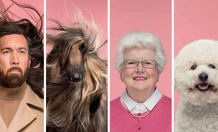 Ci właściciele psów wyglądają dokładnie jak ich pupile! Podobieństwo jest uderzające