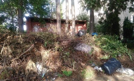 """Góra śmieci przy ogródkach. """"Nikt nie sprząta od miesięcy"""" [ZDJĘCIA]"""