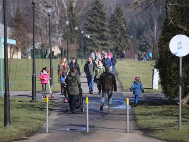 Na niedzielnym spacerze w Parku Śląskim