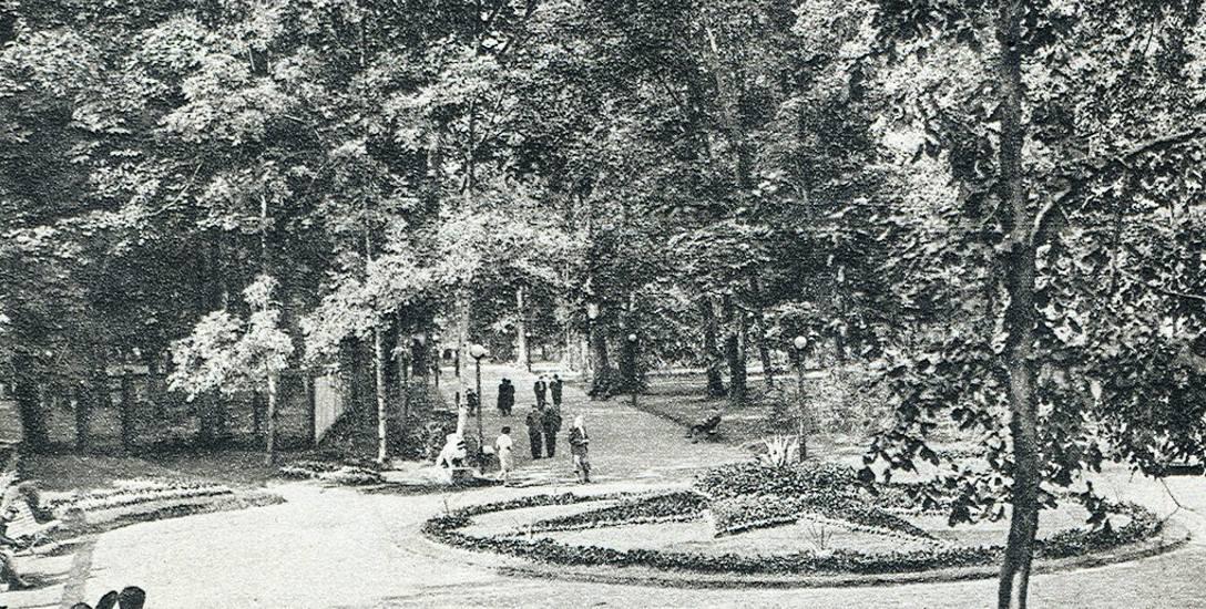 Aleja Plant biegnąca wzdłuż ul. Legionowej.  1936 - 1939