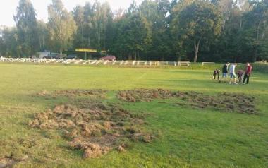 Boisko w Rybakach nie jest pierwszym obiektem sportowym, które zostało zniszczone przez dziki. Tak było Jaromirowicach