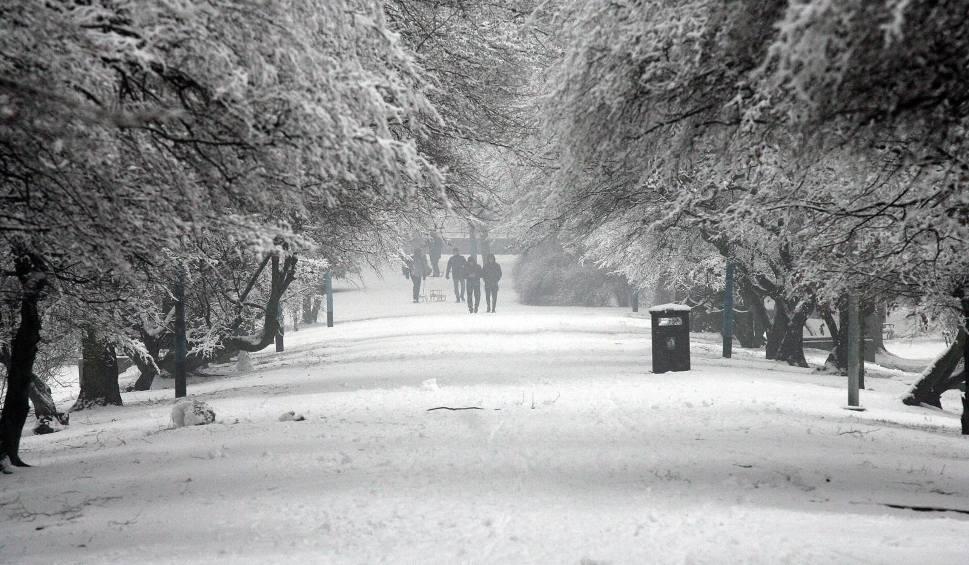 Film do artykułu: Pogoda na święta 2019. Pierwsza prognoza na święta Bożego Narodzenia [14.11.2019]