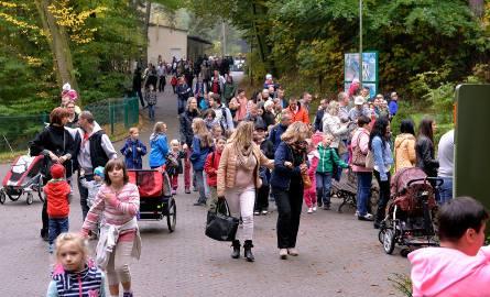 Rekordowa liczba zwiedzających w gdańskim zoo