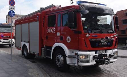 Ktoś podpalił altanki przy ulicy Toruńskiej