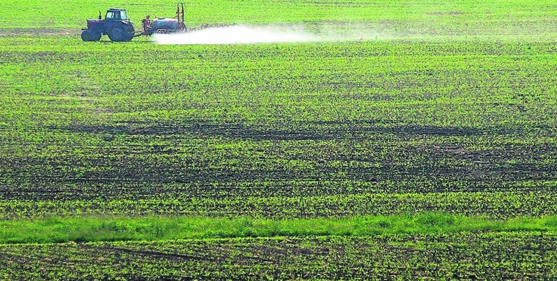 Trzy czwarte dolnośląskiej produkcji rolnej to uprawy roślin, głównie rzepaku i pszenicy. W gospodarstwie w Warcie Bolesławieckiej zajmowały one 1540