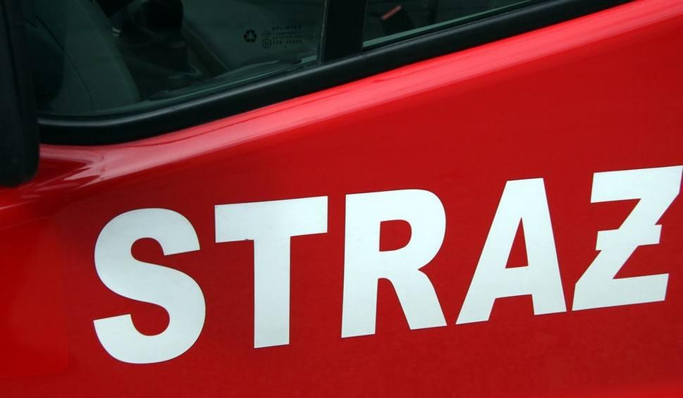 Film do artykułu: Pożar auta w Pionkach na Alejach Lipowych. Spalił się doszczętnie