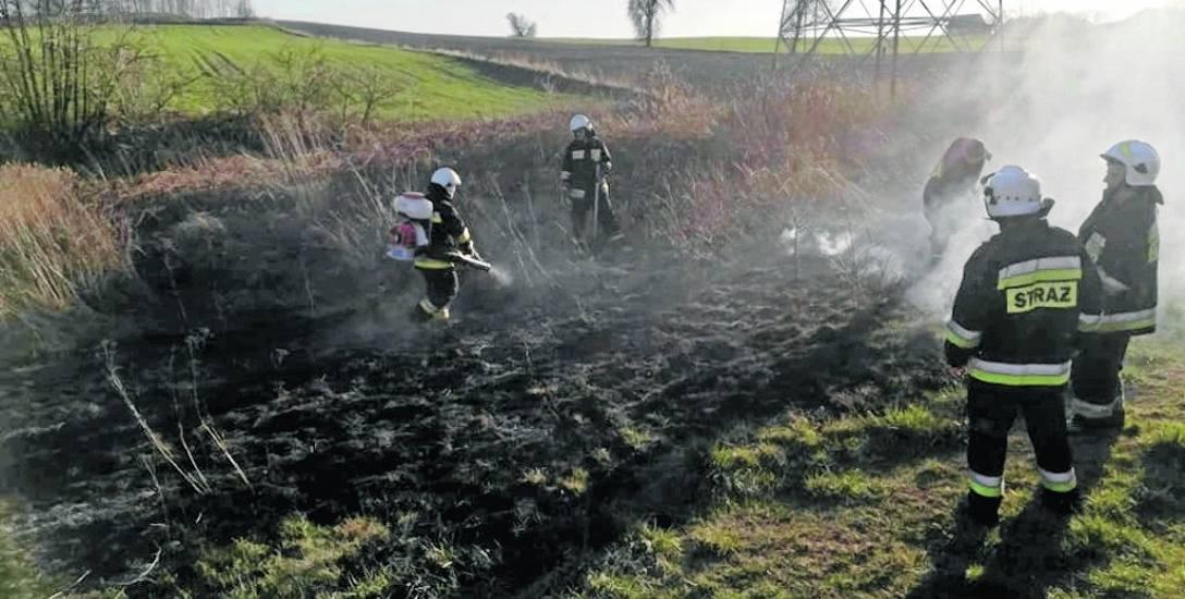 Trawy stanęły w ogniu między innymi w gminie Lipce Reymontowskie