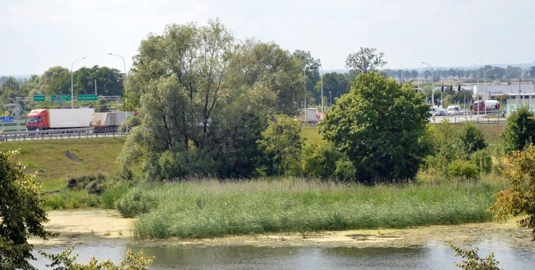 Głównym punktem sporu, jak wyjaśniały nam władze miasta, był grunt położony przy starym moście od strony drogi krajowej nr 55. Tzw. półwysep nad rzeką