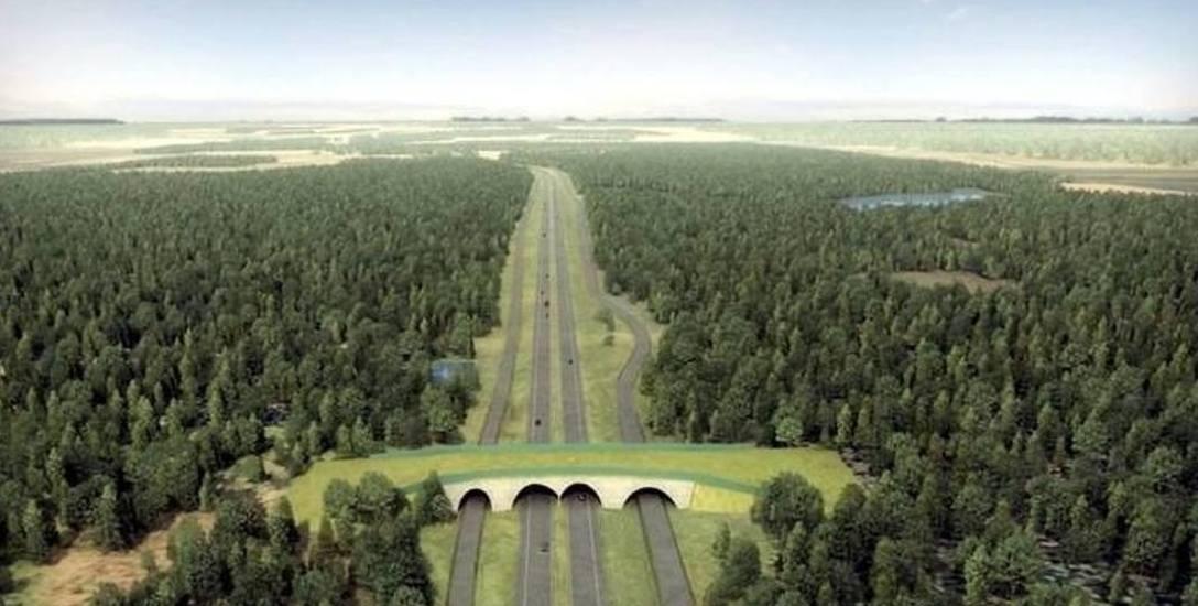 """Budowa Trasy Kaszubskiej. Rządowe """"tak"""" dla drogi S6!"""
