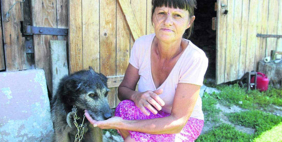 Barbara Ilnicka przeżyła spotkanie z niedźwiedziem, z odsieczą przyszedł jej mały kundelek Burek, który szczekał na drapieżnika