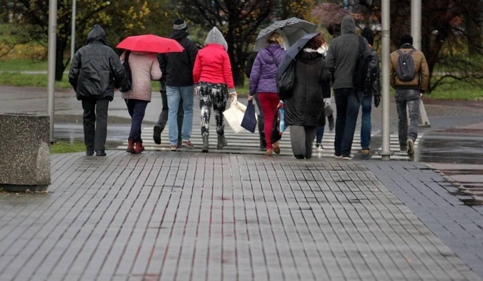Film do artykułu: Pogoda w Opolu i na Opolszczyźnie. Z każdym dniem coraz cieplej
