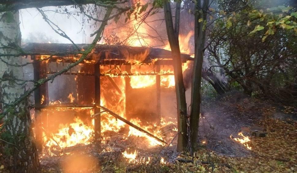 Film do artykułu: Pożar domku działkowego na Granitowej w Podjuchach [ZDJĘCIA]