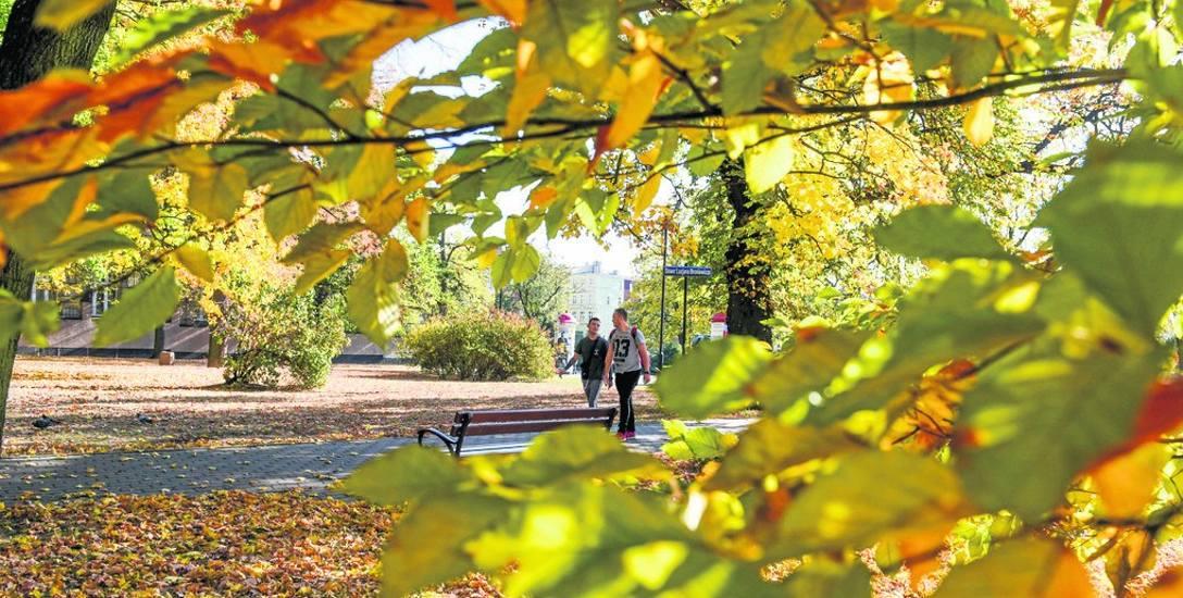 Słoneczna i ciepła pogoda ma się utrzymać do końca tygodnia. Potem czeka nas typowa polska jesień - zrobi się chłodniej, wilgotniej i mgliście. Za grzejącymi
