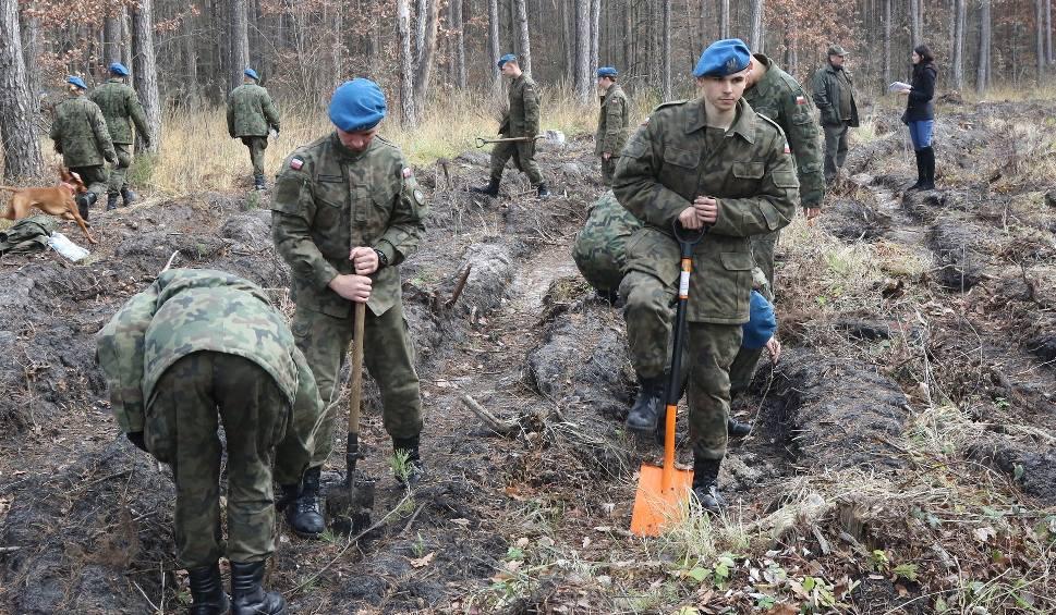 Film do artykułu: W Bilczy żołnierze sadzili dęby na 100-lecie odzyskania niepodległości