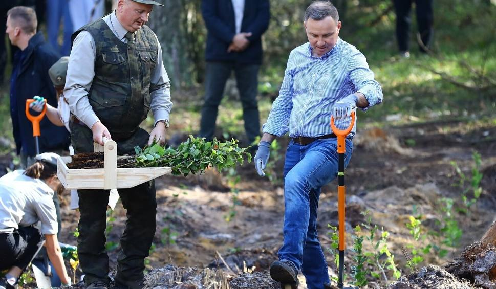 Film do artykułu: Prezydent Andrzej Duda sadził drzewa! Akcja sadzenia drzew w Lesie Wolborskim z udziałem pary prezydenckiej