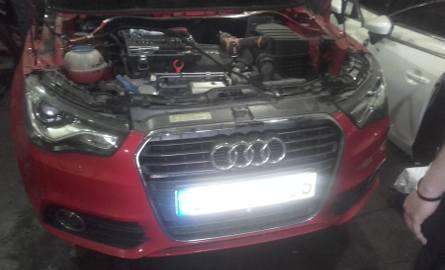 Policjanci zlikwidowali kolejną dziuplę samochodową. Odzyskali skradzione auta warte 250 tys. zł