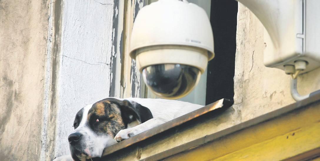 Nasza czytelniczka ma przypuszczenia, że sąsiedzi dzięki systemowi kamer obserwują nie tylko swój teren, ale również jej nieruchomość. Domaga się ochrony