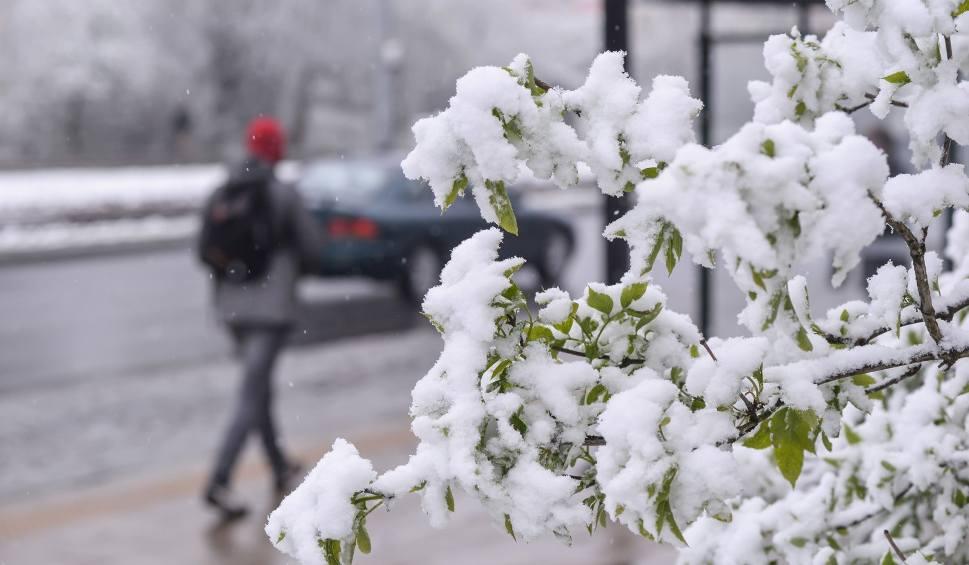 Film do artykułu: W nocy i rano opady śniegu na południu Opolszczyzny. Pogoda na poniedziałek