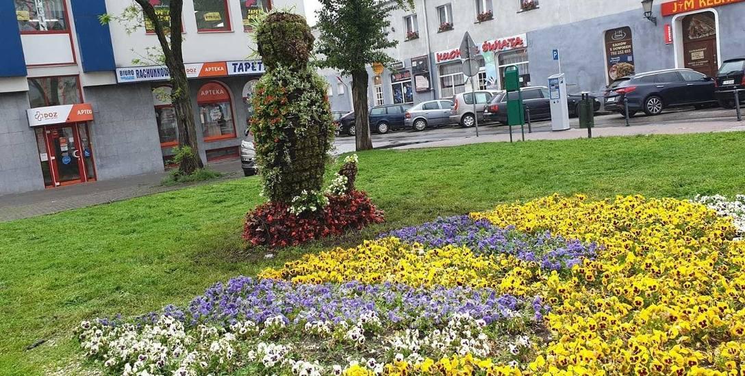 Sowa z kwiatów, usytuowana na trawniku przy inowrocławskim Rynku.