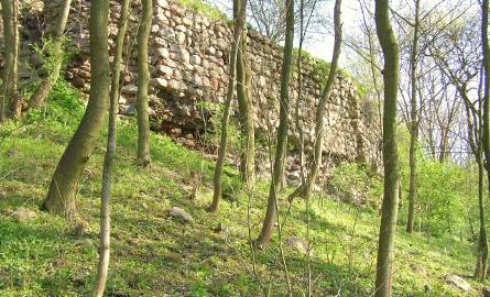 Pozostałości zamku w Lipienku