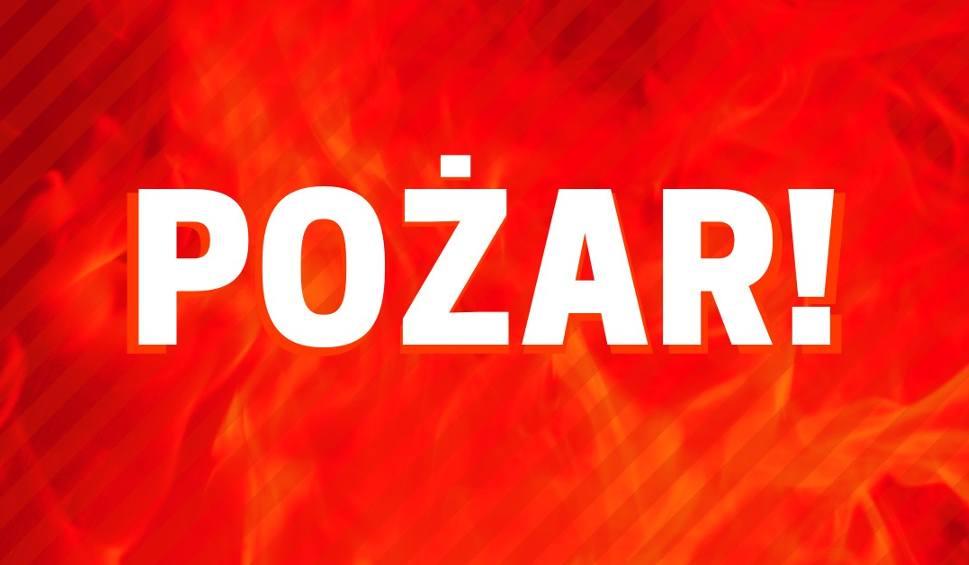 Film do artykułu: Pożar samochodu osobowego na DK 25 w Stryszku. Duże utrudnienia w kierunku Bydgoszczy
