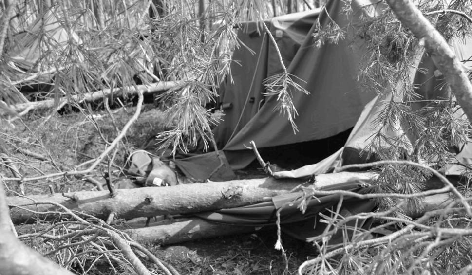 Film do artykułu: Tragedia w Suszku na Pomorzu. Zginęli harcerze z Łódzkiego