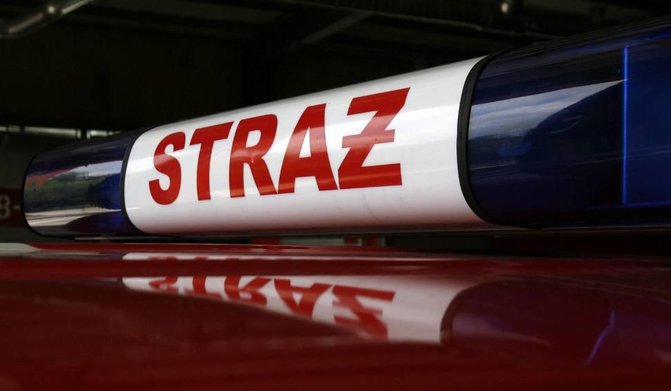 Film do artykułu: Tragedia w Brzeszczach. W pożarze mieszkania zginęła jedna osoba