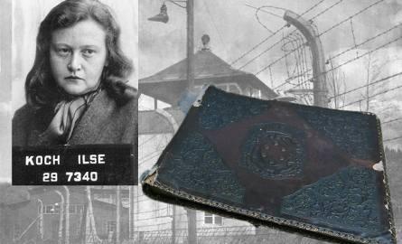 Znalazł makabryczny dowód zbrodni i ludobójstwa w niemieckim obozie i przekazał go Muzeum Auschwitz-Birkenau [ZDJĘCIA]