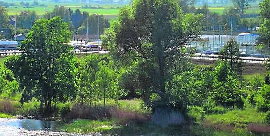 Główny punkt sporu dotyczy działki położnej nad Nogatem u zbiegu al. Rodła (DK 22) i ul. Wałowej (DK 55)