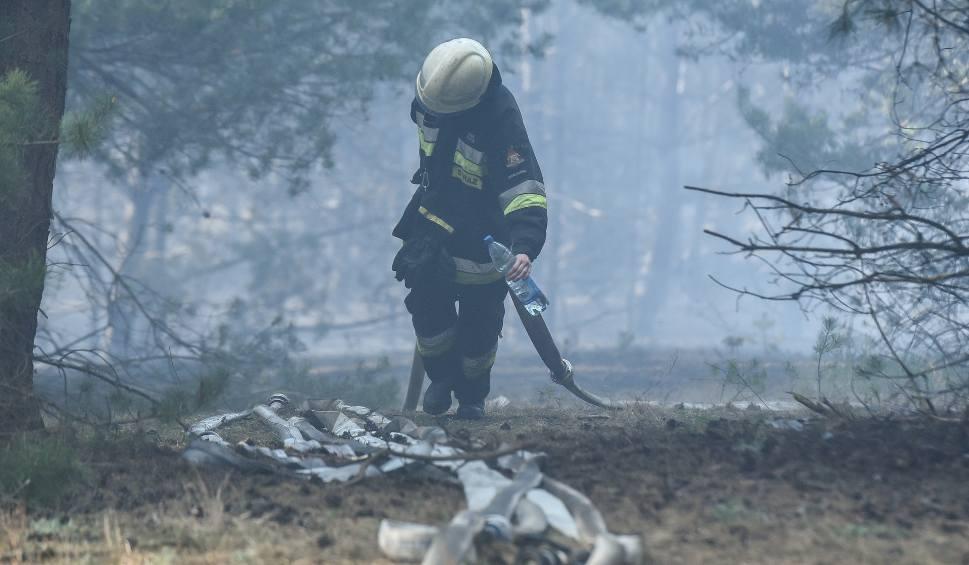 Film do artykułu: Fordońskie górki znowu płoną - strażacy są na miejscu