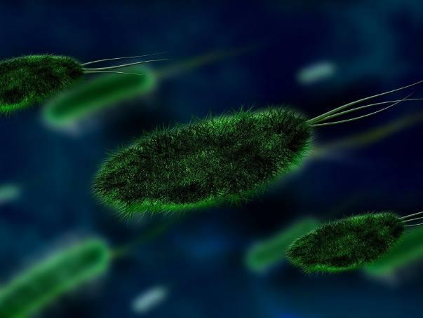 Zabójczy koronawirus nCoV z Wuhan dotarł z Chin do USA. Wkrótce może zalać cały świat