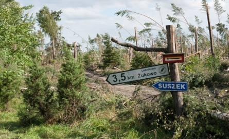 Nad Nadleśnictwami Rytel (to tu straciły życie dwie harcerki z obozu w Suszku), Czersk i Przymuszewo w piątek rozpętało się prawdziwe piekło.